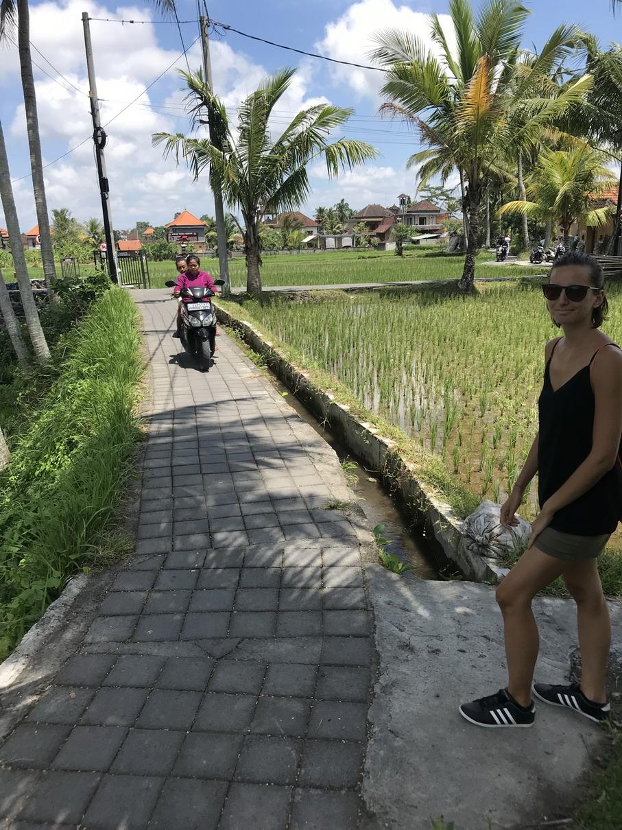 Motorozás a rizsöldeken - Ubud