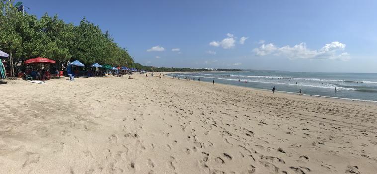 Bali beach life 1