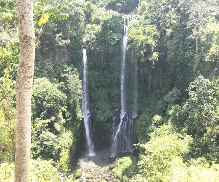 Bali Sekumpul vízesés
